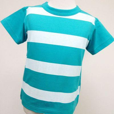 半袖Tシャツ・ブルーインパルス